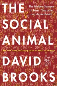 The Social Animal - David Brooks
